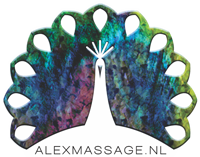 Alex Mobile Massage Leiden